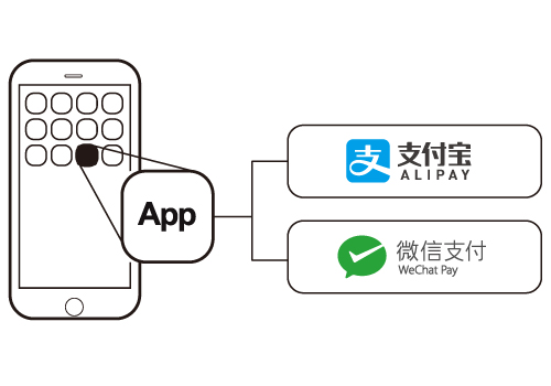 install alipay and wechat pay into mobile app